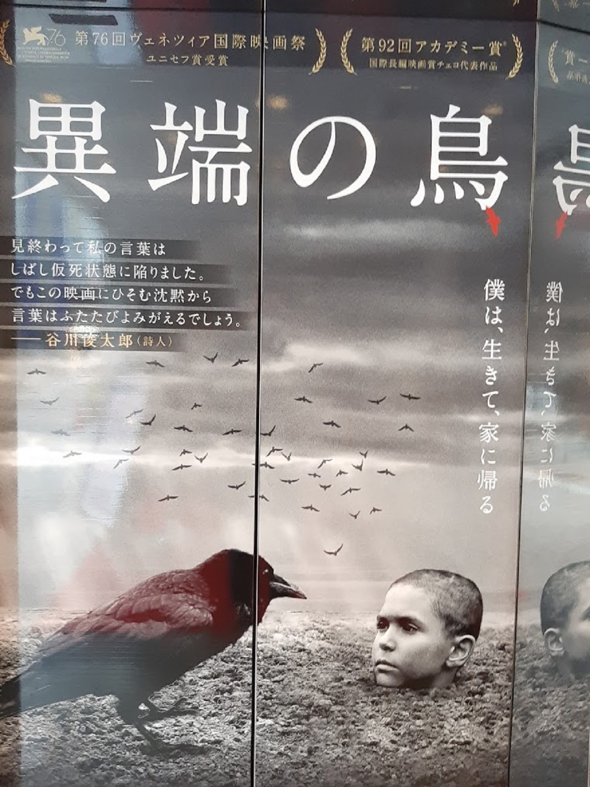 映画『異端の鳥』のチラシポスター