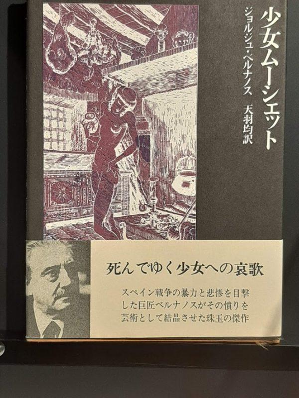 小説『少女ムシェット』