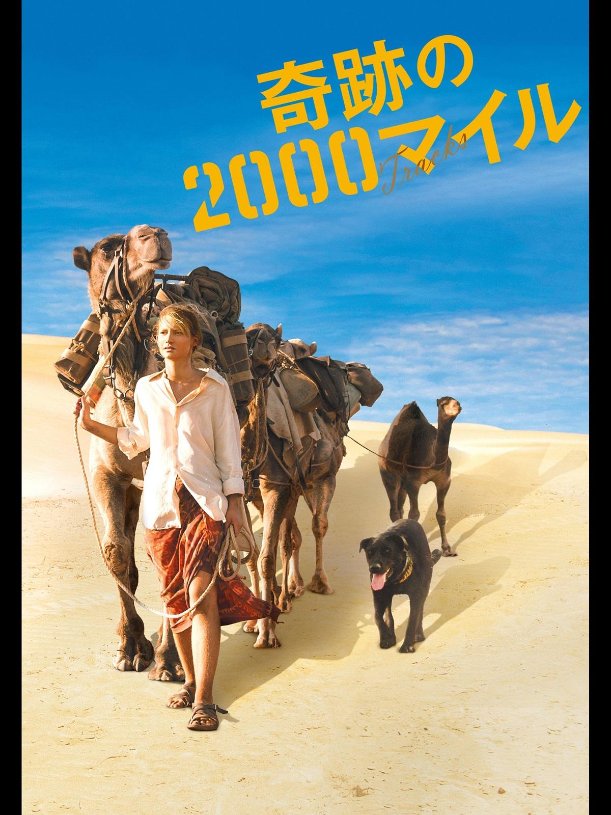 映画『奇跡の2000マイル』のチラシポスター