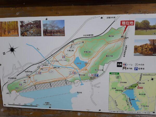 狭山公園の案内図