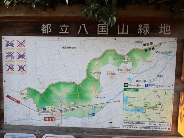 「八国山緑地」の案内図