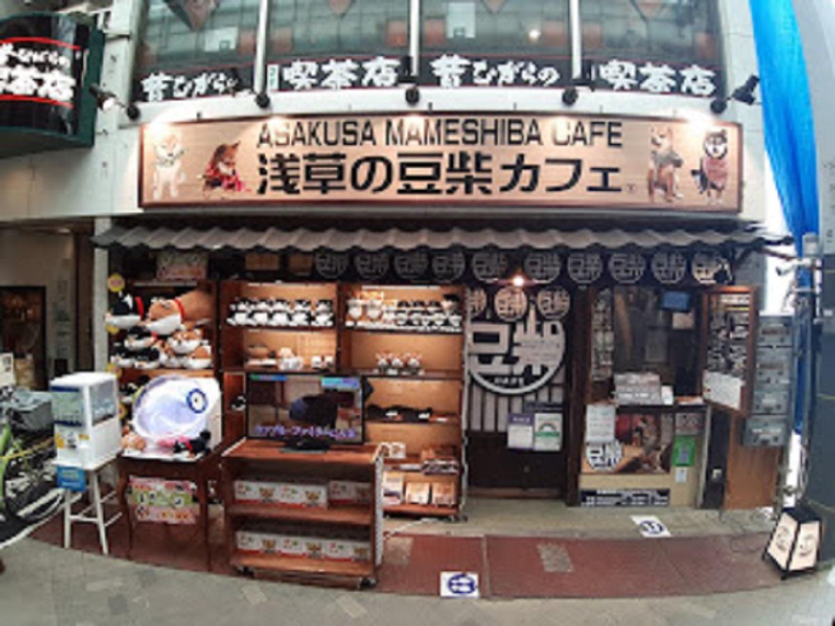 浅草豆柴カフェ